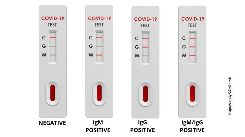 اختبار الأجسام المضادة السريعة