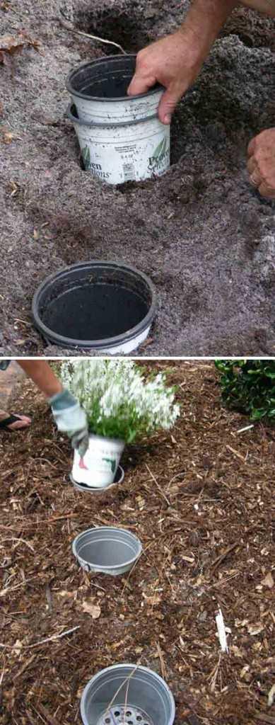 نصيحة لتغيير أواني الزهور في الأماكن بسهولة