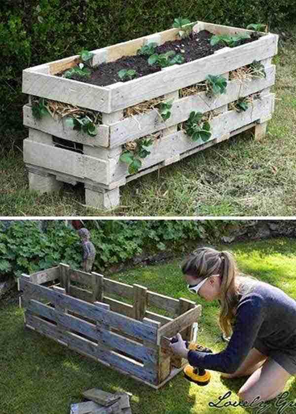 يمكن تحويل لوح خشبي إلى زارع