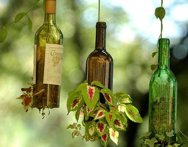 زجاجات تعليق النباتات