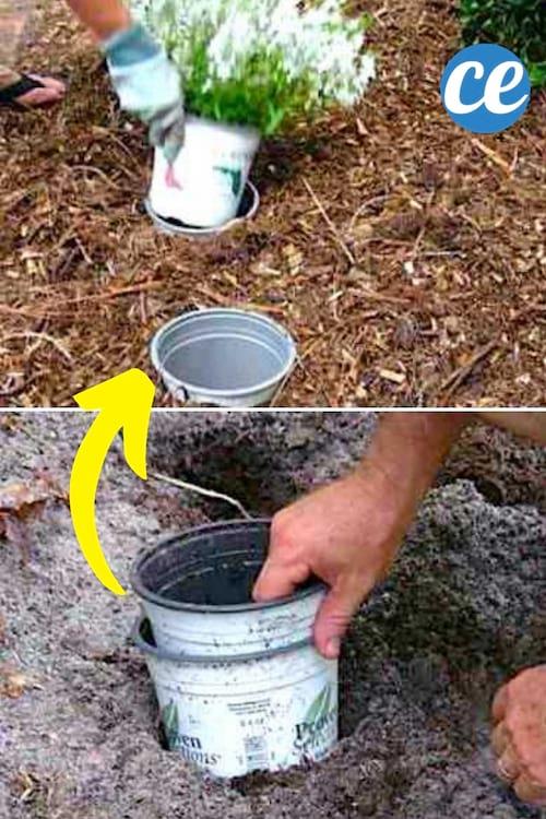 إناء للزهور مدفون في الأرض لتغيير مكان النباتات بسهولة