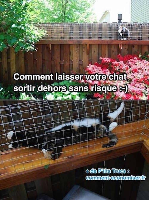ها أنت ذا ، ستتمكن قطتك من أخذ الهواء دون مخاطرة :-)