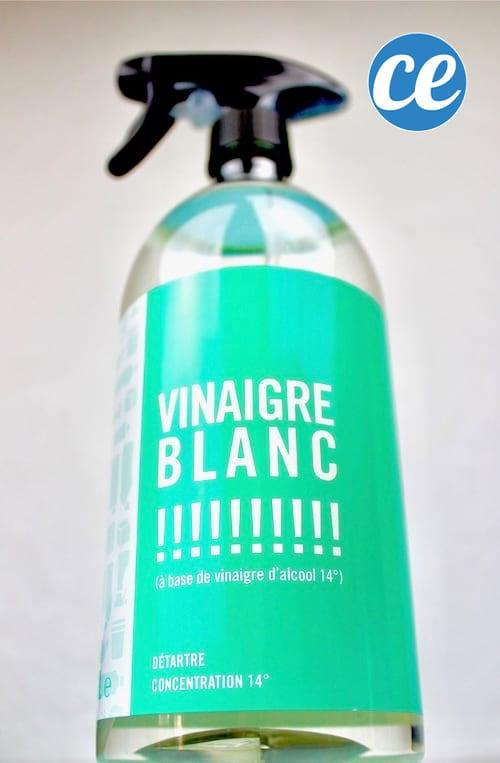 الخل الأبيض من أفضل المنتجات الطبيعية للقضاء على العفن تمامًا.
