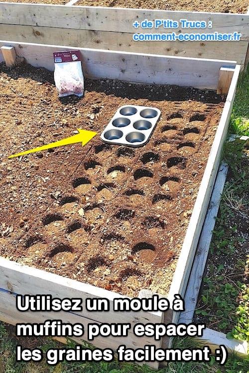 كيفية تباعد البذور أو المصابيح بشكل صحيح في الحديقة