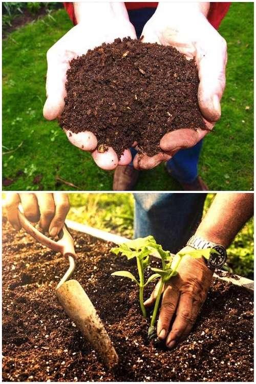 استخدم المزيج الصحيح من التربة والسماد لملء حديقة الخضروات المرتفعة.