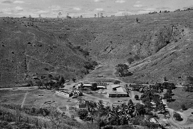 أرض سيباستيو سالغادو خالية من الأشجار بسبب إزالة الغابات