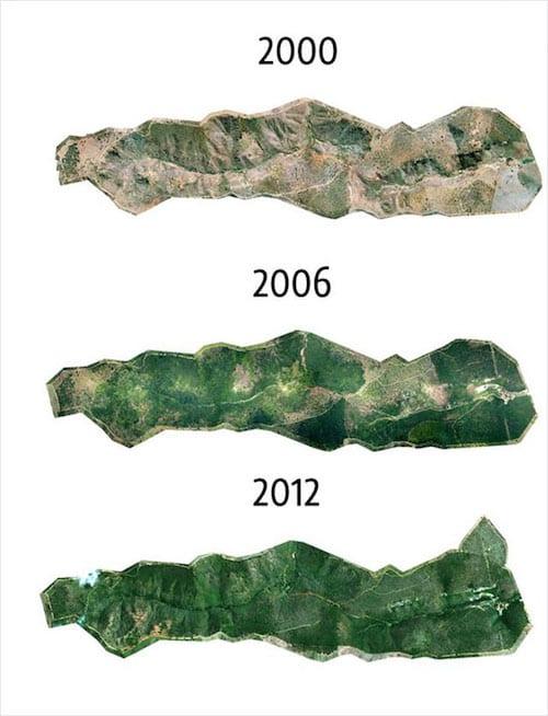 تطور غابات الأمازون المطيرة من 2000 إلى 2012