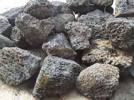 الصخور البركانية ضد الرخويات