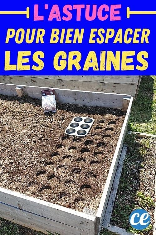 رقعة خضروات مع قصدير مافن لتفريغ البذور