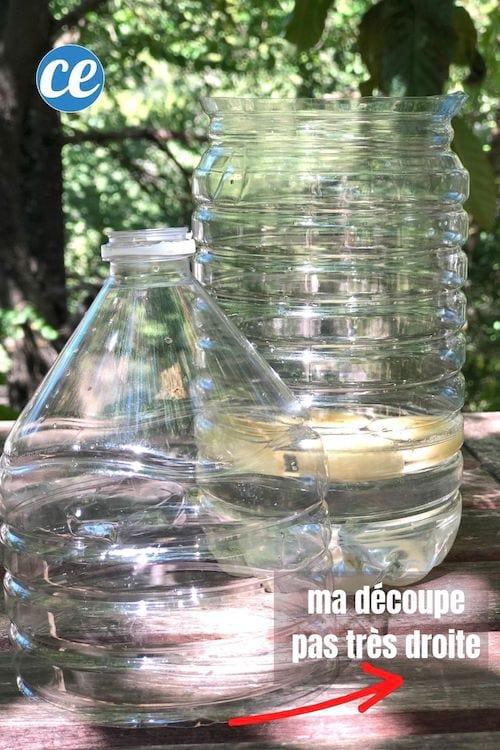 زجاجة بلاستيكية تستخدم في صنع مصيدة ذباب محلية الصنع