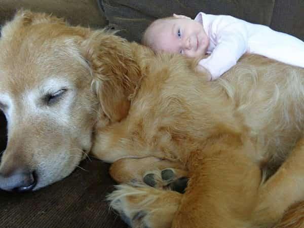 طفل يرقد على كلبه ويبتسم