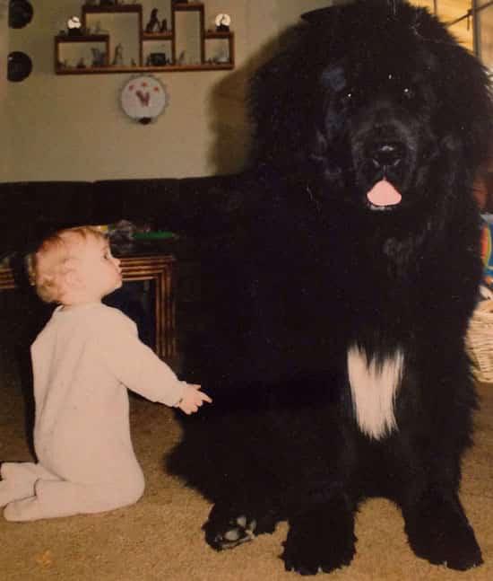 طفل يجلس بجانب كلبه الأسود الكبير