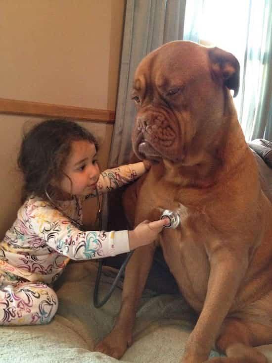 فتاة صغيرة تسمع كلبها الكبير