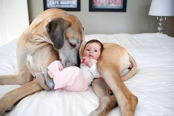 طفل يرقد مع كلبه على السرير