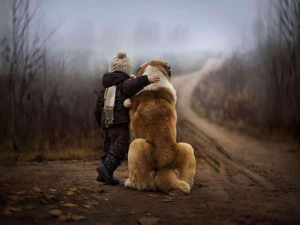 طفل ضد كلبه الكبير في الريف